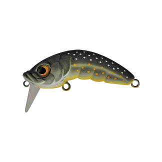 Native Lures